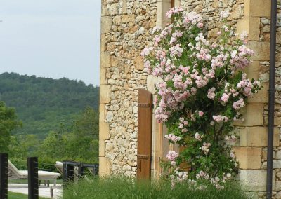 aménagement jardin sarlat